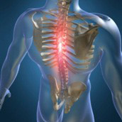 chiropractic-featured-thm